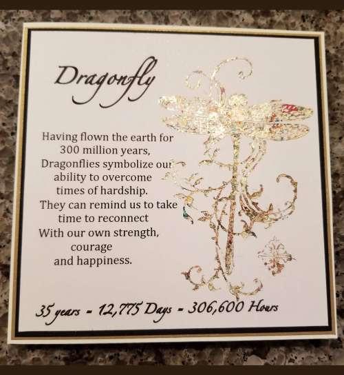 Birthday Card - Dragonfly